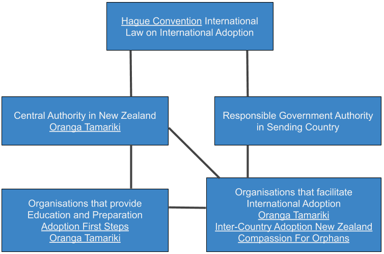 Adoption Organisations Flowchart